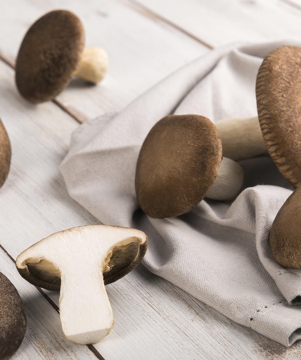 funghi cardoncelli